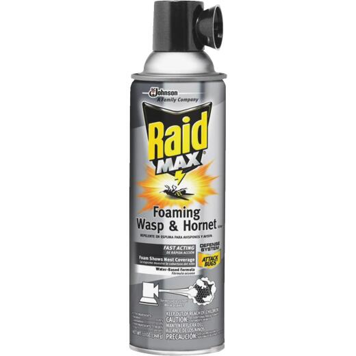 Raid 13 Oz. Foaming Aerosol Spray Wasp & Hornet Killer